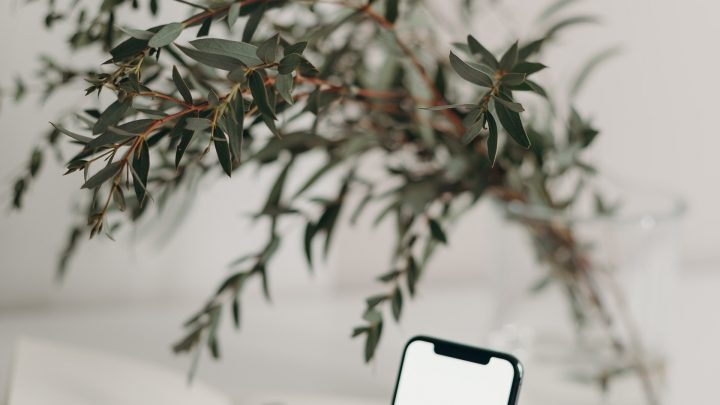 How To Enjoy The Benefits Of Verizon FiOS